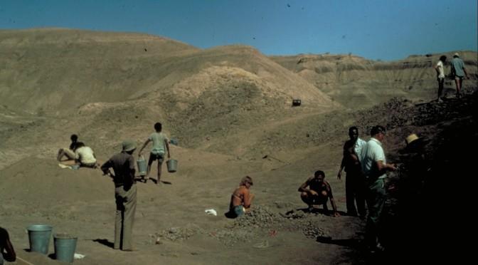 Hadar Etiopía
