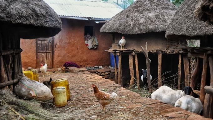 Viaje a Etiopia Konso